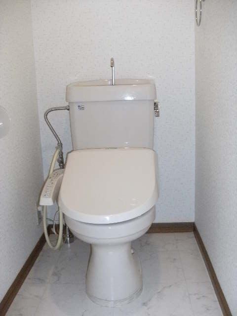 シャトレ天拝 / 501号室トイレ
