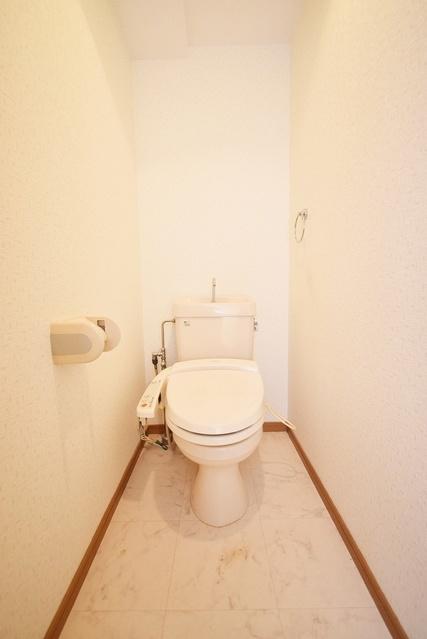 シャトレ天拝 / 702号室トイレ