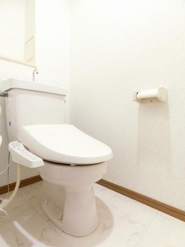 レジデンス俗明院 / 202号室トイレ