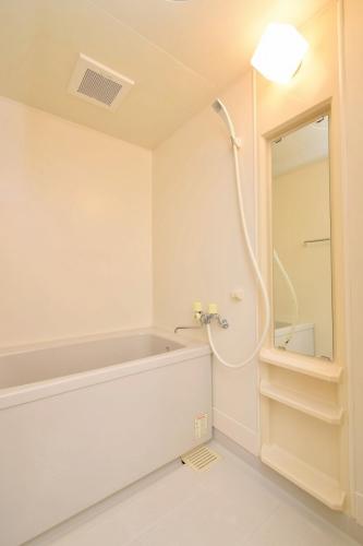 レジデンス俗明院 / 305号室洗面所
