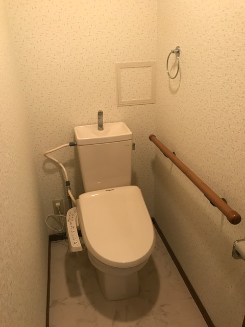 グリーンヒルズ桜台 / 2-203号室トイレ