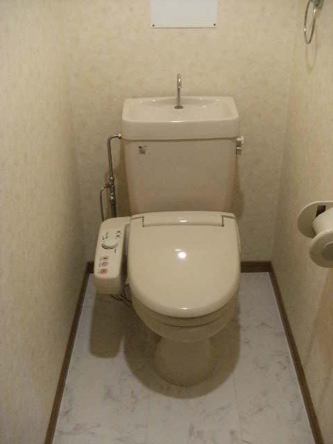 ルミエール'98 / 201号室トイレ