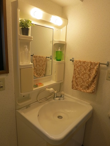 フレア水城 / 101号室洗面所