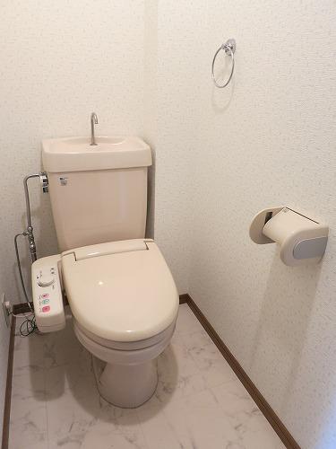 フレア水城 / 206号室トイレ