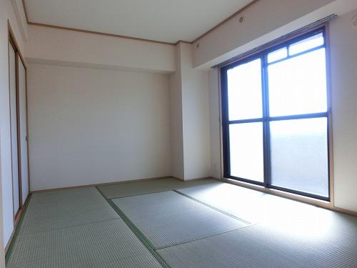 ディナスティⅧ / 101号室その他部屋・スペース