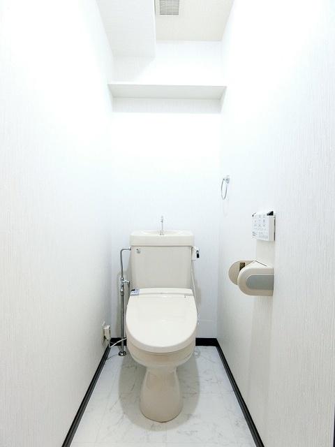 ディナスティⅧ / 201号室トイレ