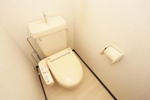 ディナスティⅧ / 406号室トイレ