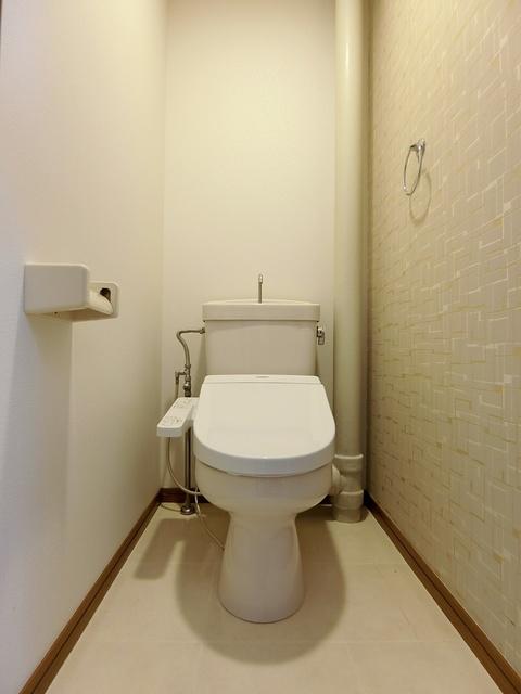 エステート杉塚 / 202号室トイレ