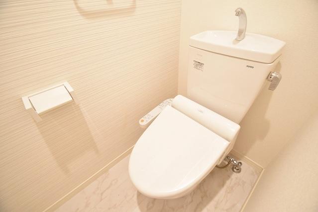アミューザン水城 / 203号室トイレ