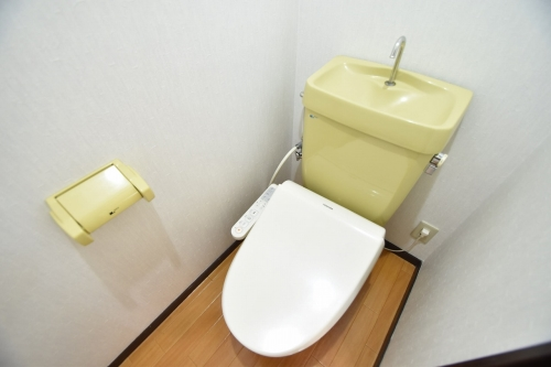 ドリームハウスHARA3(ペット可) / 302号室トイレ