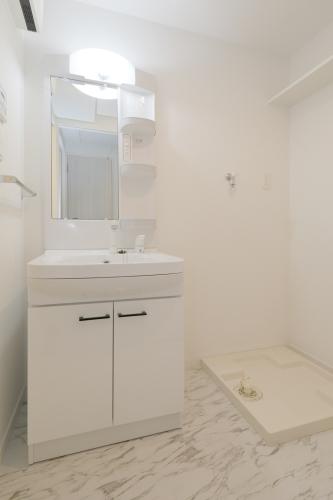 ネクスト二日市南 / 603号室洗面所