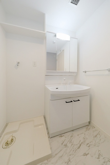 ネクスト二日市南 / 802号室洗面所