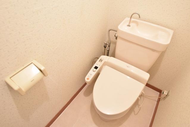 シャトレ針摺 / 102号室トイレ