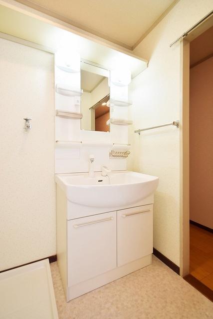 シャトレ針摺 / 402号室洗面所