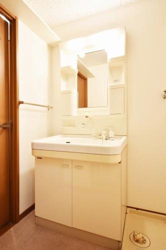 フォーレスト壱番館 / 201号室洗面所