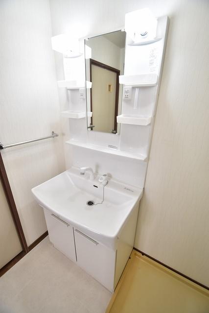 シャトー渡辺 / 401号室洗面所