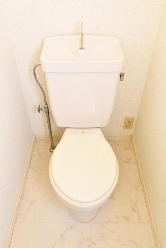 レピュートMF / 102号室トイレ