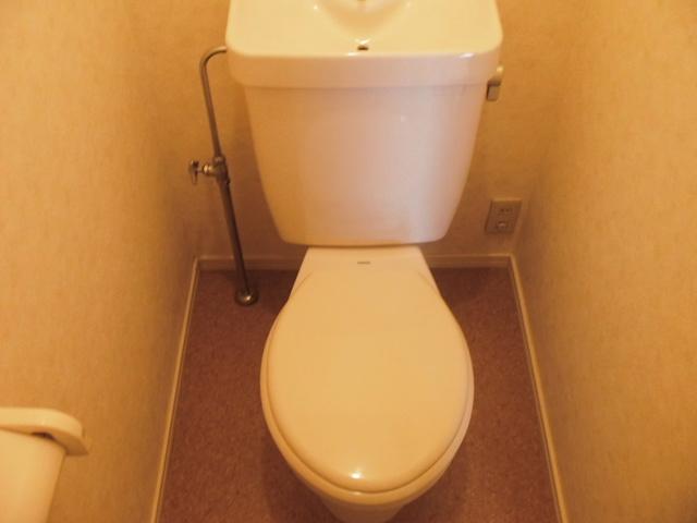 レピュートMF / 103号室トイレ