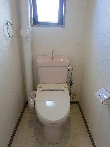 ドミール水城 / 101号室洗面所