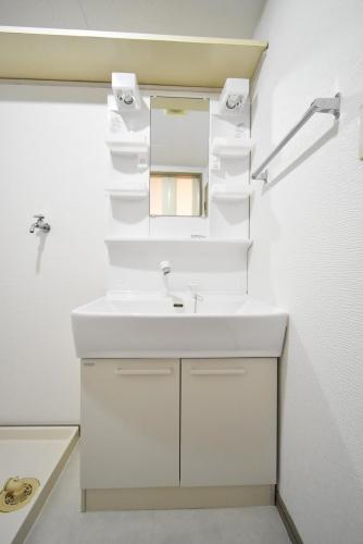 ドミール水城 / 102号室洗面所