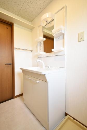 パストラル杉塚 / 201号室洗面所