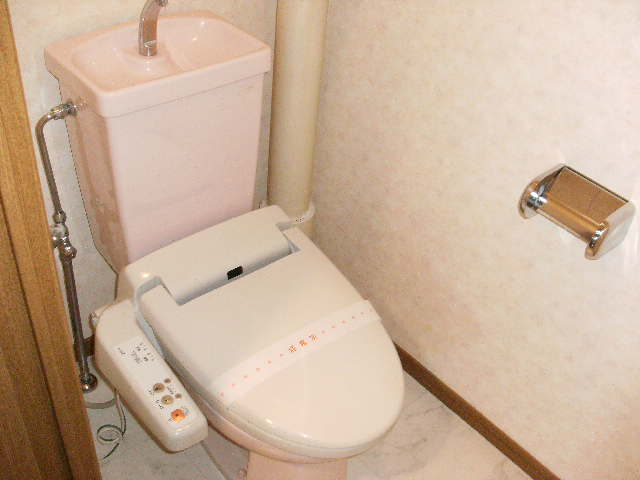パストラル杉塚 / 403号室トイレ