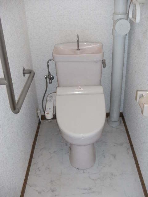 サンハイツ公園通り / 303号室トイレ