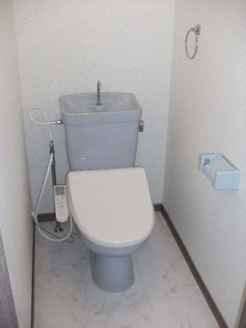 シャトレ針摺Ⅱ / 401号室トイレ