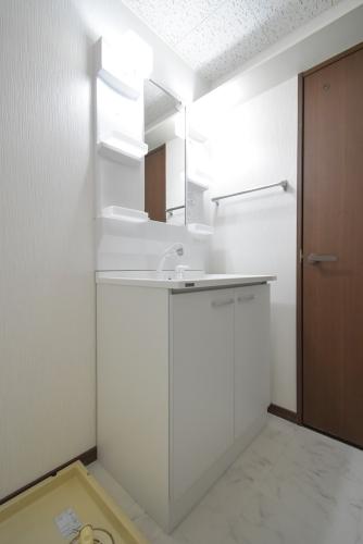 サンライズ天拝 / 205号室洗面所