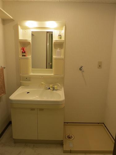 エクセレント中嶋Ⅱ / 303号室洗面所