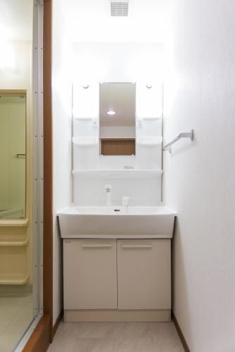 シャトレ弐番館 / 102号室洗面所