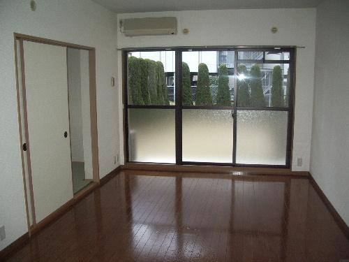 シャトレ弐番館 / 205号室リビング