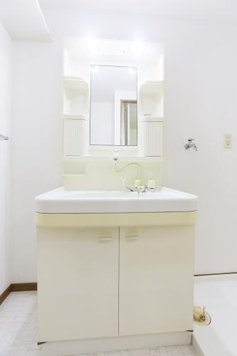 アネックスけやき通り / 201号室洗面所