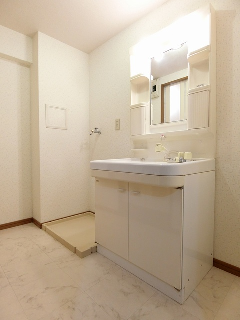 アネックスけやき通り / 301号室洗面所