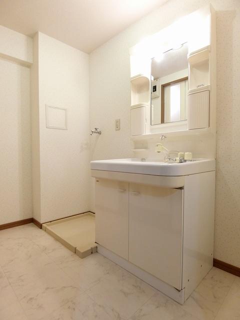 アネックスけやき通り / 505号室洗面所