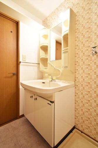 グランドソフィア20 / 101号室洗面所