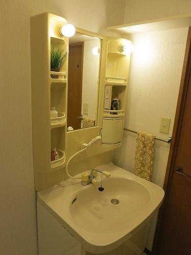 グランドソフィア20 / 305号室洗面所
