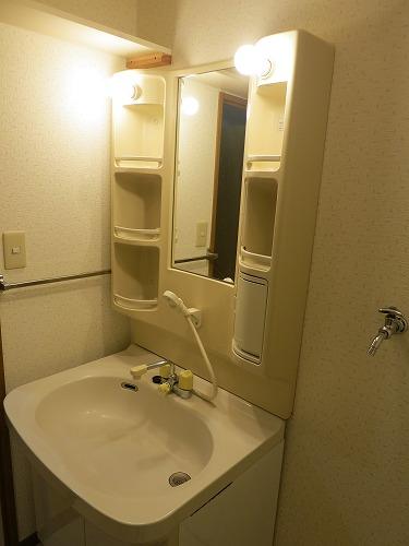 グランドソフィア20 / 401号室洗面所