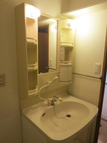 グランドソフィア20 / 502号室洗面所