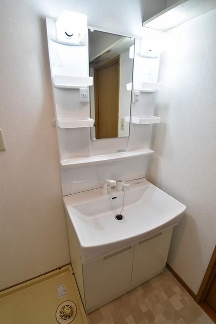 シャトレ天拝 / 303号室洗面所