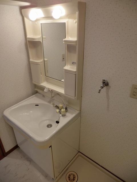 シャトレ天拝 / 305号室洗面所
