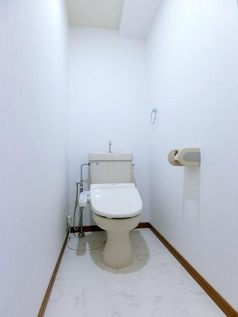 シャトレ天拝 / 401号室トイレ