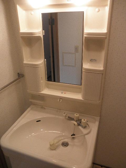 レジデンス俗明院 / 105号室洗面所