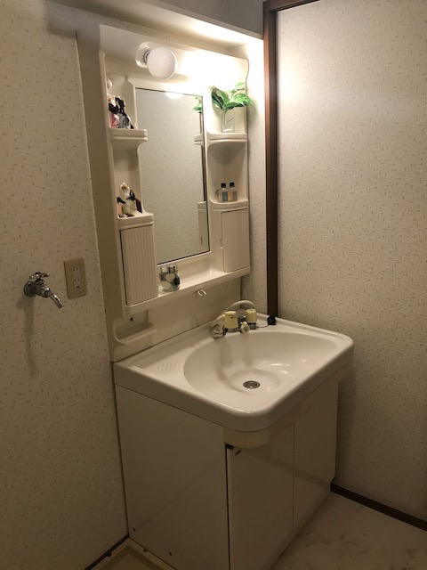 グリーンヒルズ桜台 / 2-203号室洗面所