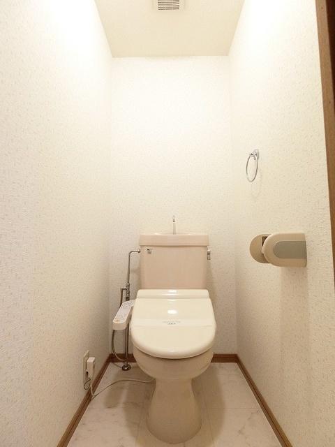 プレステージ塔原 / 303号室トイレ