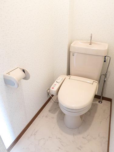 フレア水城 / 202号室トイレ
