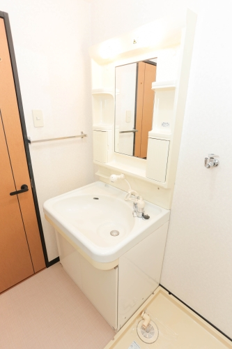 ディナスティⅧ / 406号室洗面所