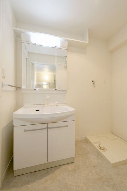 エルマーナⅡ / 501号室洗面所