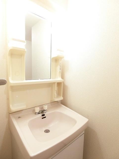 プレジール天拝 / 102号室洗面所