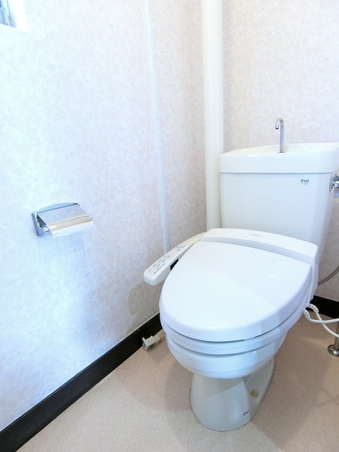ビレッジ都府楼 / 201号室トイレ